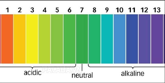 Thang đo độ PH tiêu chuẩn