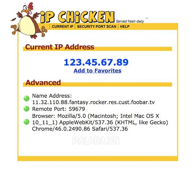 Tìm kiếm địa chỉ IP công cộng qua ipchicken